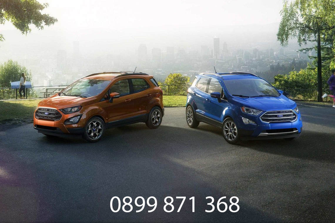 Dai-ly-Ford-ecosport